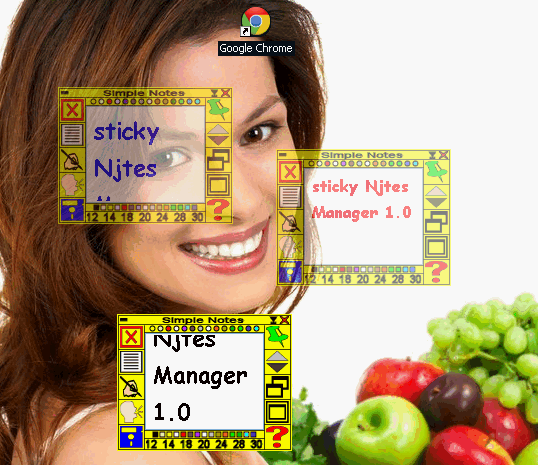 Sticky Notes Manager 1.0
